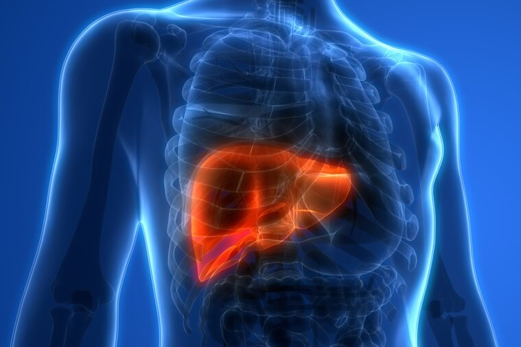 types of liver diseases
